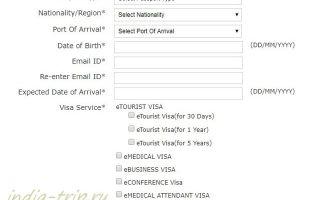 Электронная виза в индию самостоятельно: как оформить документы