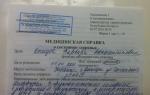 Вид на жительство в беларуси для россиян, украинцев в 2020 году: права и обязанности, документы