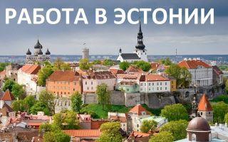 Работа в эстонии в 2020 году: трудоустройство, вакансии и заработные платы