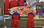 Работа в норвегии для русских на нефтяных платформах: на рыбном заводе