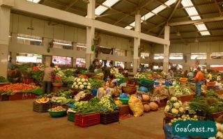Уровень жизни и цены в индии: стоимость продуктов и недвижимости на гоа в 2020 году