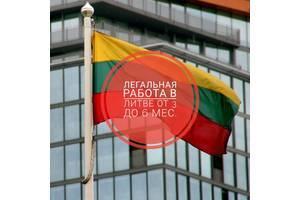 Работа в Литве для русских: вакансии 2020 года