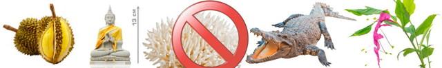 Что можно и нельзя ввозить и вывозить из Таиланд в 2020 году - список запретных предметов, таможенные правила Таиланда