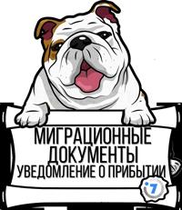 Как заполнить бланк уведомления о прибытии иностранного гражданина в РФ в 2020 году