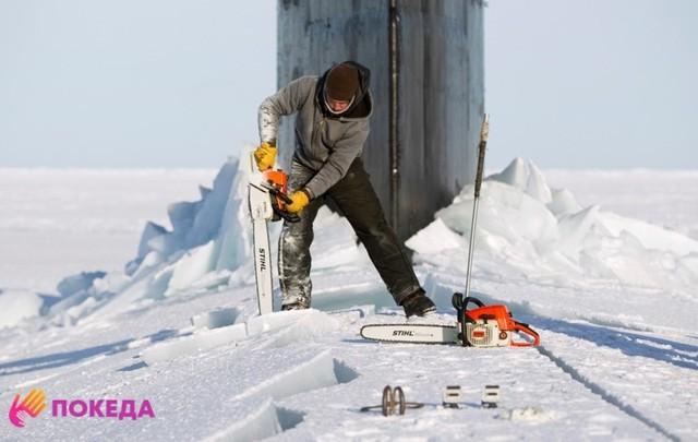Работа в Антарктиде в 2020 году: особенности трудоустройства и уровень зарплат