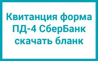 Форма ПД-4: бланк квитанции для оплаты госпошлины в 2020 году