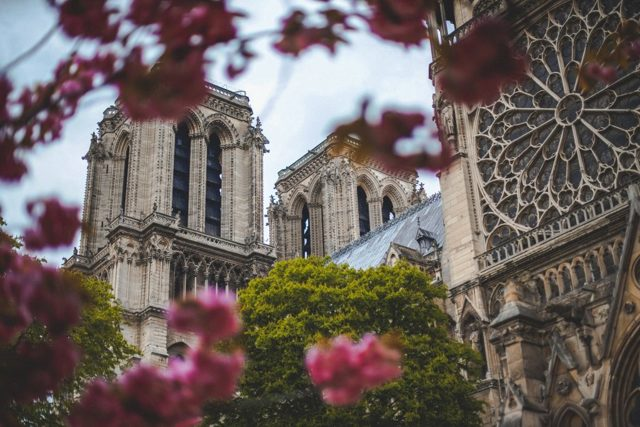 Фото на визу во Францию в 2020 году: размер и другие актуальные требования