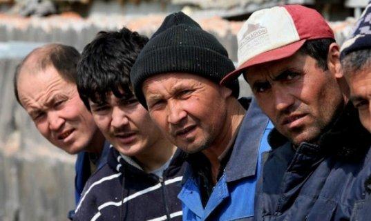 Нелегалы: нелегальное пересечение границы, как пожаловаться в ФМС на нелегалов анонимно