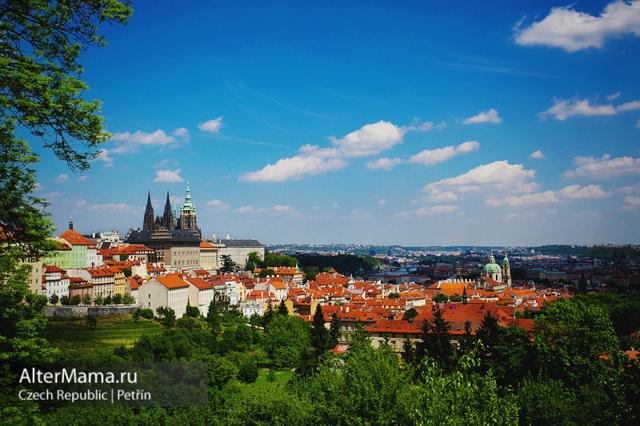 Страховка для визы в Чехию в 2020 году: сколько стоит и как оформить, перечень документов