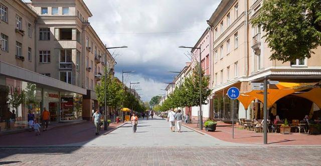 Налогообложение в Литве для физических и юридических лиц в 2020 году