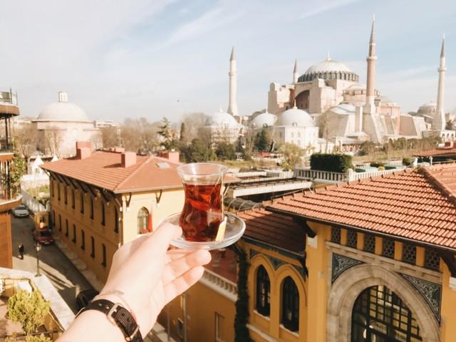 Виза в Стамбул в 2020 году: перечень необходимых бумаг, транзит через Стамбул, оформление транзитной визы, как посетить Стамбул без визы