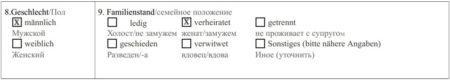 Анкета на визу в Австрию в 2020 году: образец заполнения и основные ошибки
