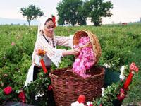 Рабочая виза в Болгарию для россиян в 2020 году: особенности получения и оформления