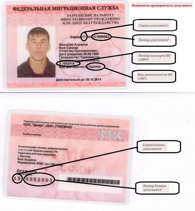 Проверка действительности разрешений на работу - Первый миграционный