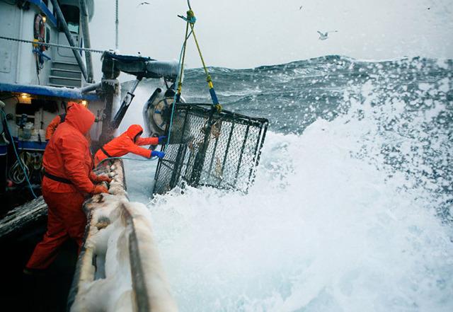 Работа на Аляске в 2020 году: доступные вакансии и уровень заработных плат