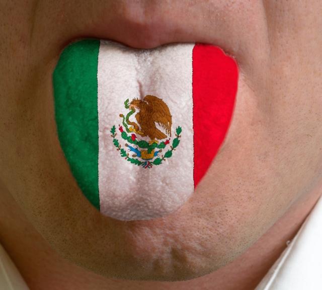Государственный язык Мексики: : наречия, испанский язык, история