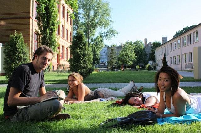 Стажировка в Испании для студентов и специалистов в 2020 году: преимущества, требования, варианты, стоимость